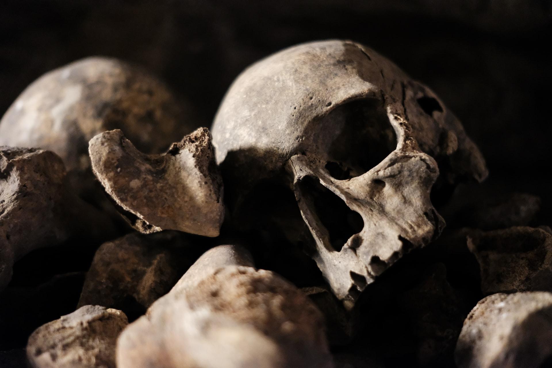 Ein menschlicher Schädel der auf anderen Knochen ruht.